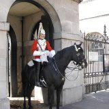 ホースガード 王室騎兵連隊 household cavaly
