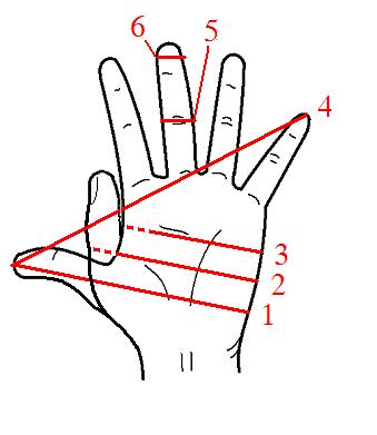hh hand,ハンド(単位)