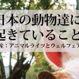 日本の動物達に起きていること