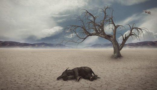 地球温暖化 地球規模の気温変動は現代特有の事象であることが判明 さてどうするか