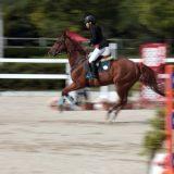 日本の乗馬人口が増えない理由 リスクへの意識