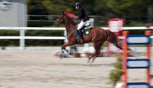 乗馬のライセンス 乗馬技能認定