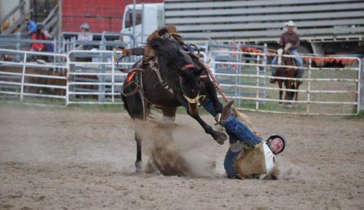 乗馬施設での事故