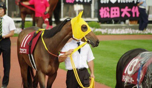 有馬記念 2020 中継情報まとめ NHKプラスでネット無料中継 見逃してもタイムシフトでOK