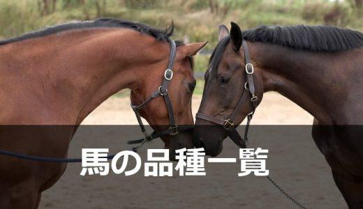 馬の品種一覧(馬の種類を調べる)〔登録分のみ・テスト版〕