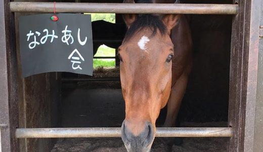 """引退競走馬""""暁号""""、タマタマを取られた日からプライベートショットまで晒されてしまう〔『なみあし会』チャンネル〕"""