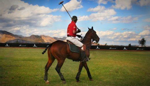 馬術競技 馬を使ったスポーツ