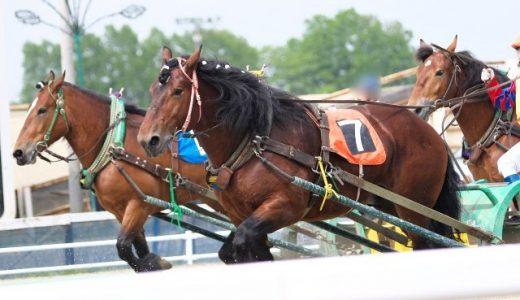 経済動物としての馬 ばんえい競馬と輓馬生産