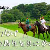 【成立】引退競走馬をもっと受け入れたい!茨城の乗馬クラブクラウドファンディングを実施