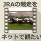 JRA中央競馬ライブ中継をネットで観る方法 無料リアルタイム配信もたまにある